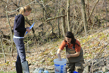 Wheeling Jesuit's Appalachian Institute engages environmental issues facing the Appalachian region through research, advocacy, immersion experiences for high school and college students, and campus sustainability efforts.